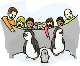 penguin-hate