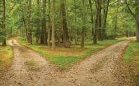 robert-frost-the-road-not-taken1